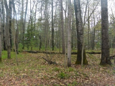 Minocqua WI Residential Lots & Land For Sale: $27,500