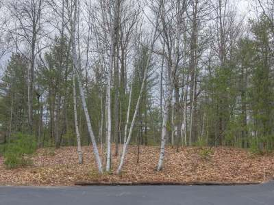 Forest County, Iron Wi County, Langlade County, Lincoln County, Oneida County, Vilas County Condo/Townhouse For Sale: 1798 Wilderness Tr #Lot 4