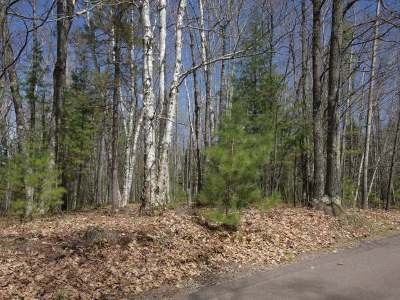 Forest County, Iron Wi County, Langlade County, Lincoln County, Oneida County, Vilas County Condo/Townhouse For Sale: 1798 Wilderness Tr #Lot 5