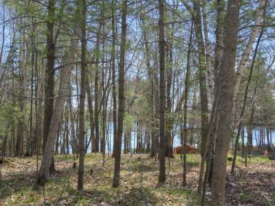 Forest County, Iron Wi County, Langlade County, Lincoln County, Oneida County, Vilas County Condo/Townhouse For Sale: 1798 Wilderness Tr #Lot 8