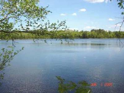 Minocqua WI Residential Lots & Land For Sale: $98,500