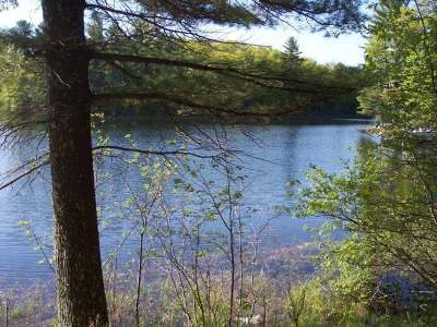 Lake Tomahawk WI Residential Lots & Land For Sale: $129,900