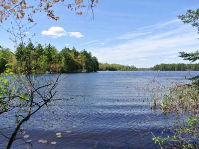 Three Lakes Residential Lots & Land For Sale: On Bonkowski Rd