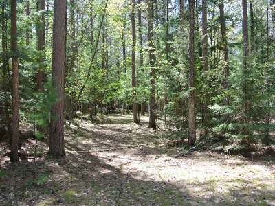 Three Lakes Residential Lots & Land For Sale: On Chicken In The Woods Rd