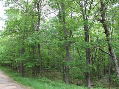 Eagle River WI Residential Lots & Land For Sale: $12,500