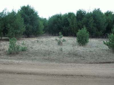 Residential Lots & Land For Sale: Near4853 Cth G