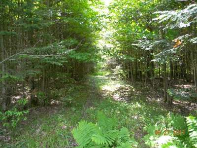 Elcho Residential Lots & Land For Sale: Near Cole St