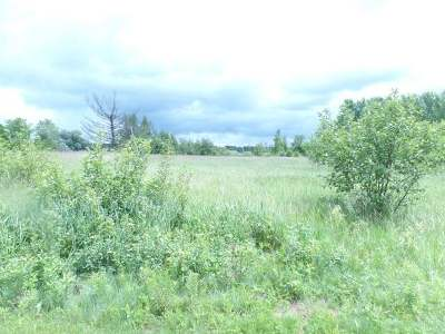 Merrill Residential Lots & Land For Sale: Lot 14 Row Rd