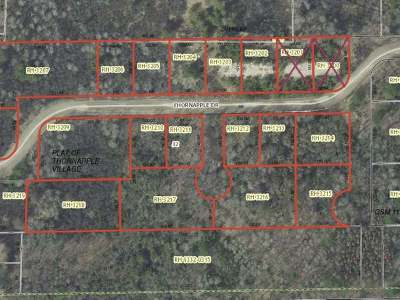 Rhinelander WI Residential Lots & Land For Sale: $79,900