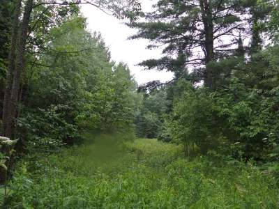 Schoepke WI Residential Lots & Land For Sale: $75,000
