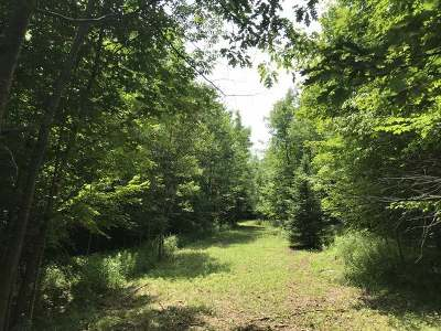Oneida County, Lincoln County, Price County Residential Lots & Land For Sale: 354 Ac. Forest Rd 130