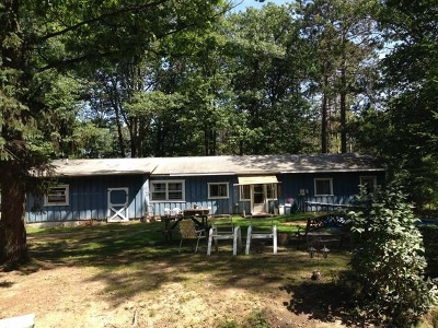 Lincoln Single Family Home For Sale: 625/627 Hwy 45