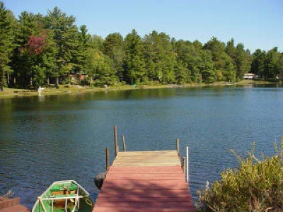 Forest County, Iron Wi County, Langlade County, Lincoln County, Oneida County, Vilas County Single Family Home For Sale: 2.8 Chipmunk Dr #2.8