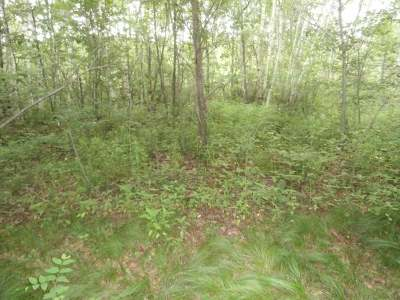 Residential Lots & Land For Sale: Lot 2 Luber Ln