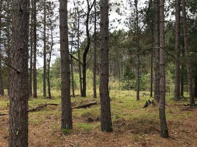 Eagle River WI Residential Lots & Land For Sale: $69,900