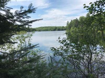 Residential Lots & Land For Sale: On Sucker Lake Rd #Lot 4