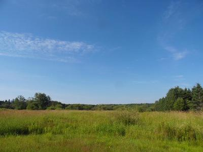 Merrill Residential Lots & Land For Sale: 20 Acres Cth M