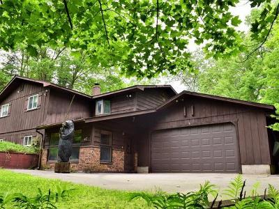 Eagle River Single Family Home For Sale: 1762 Helen Lake Rd