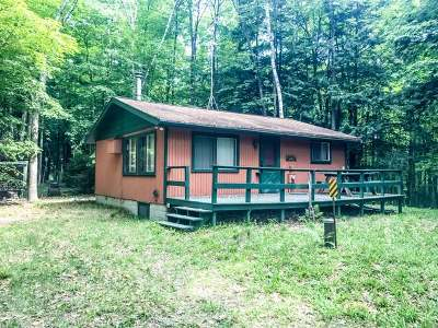 Forest County, Iron Wi County, Langlade County, Lincoln County, Oneida County, Vilas County Single Family Home For Sale: 8034 Horsehead Heights Rd E