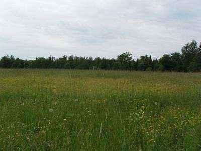 Butternut Residential Lots & Land For Sale: Near West Rd