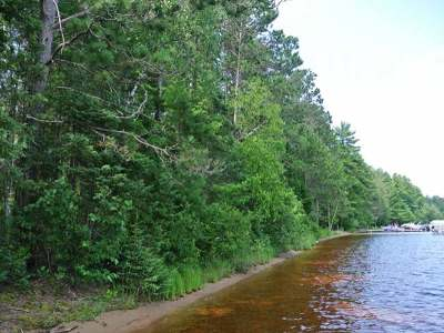 Three Lakes WI Residential Lots & Land For Sale: $134,900