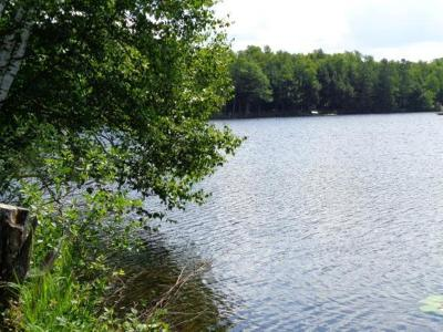 Crandon Residential Lots & Land For Sale: 8705 Walsh Lake Rd