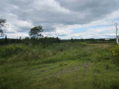 Gleason Residential Lots & Land For Sale: N6902 Deer Shiners Rd