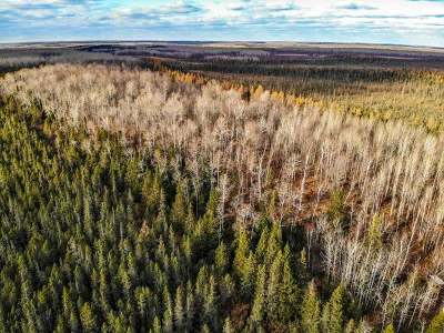 Oneida County, Lincoln County, Price County Residential Lots & Land For Sale: On State Rd 86