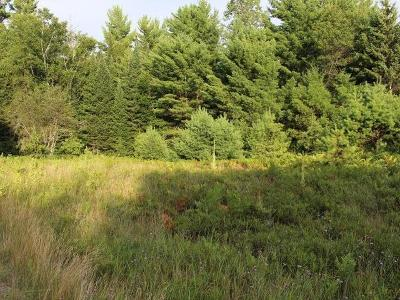 Eagle River Residential Lots & Land For Sale: On Eagle Waters Rd