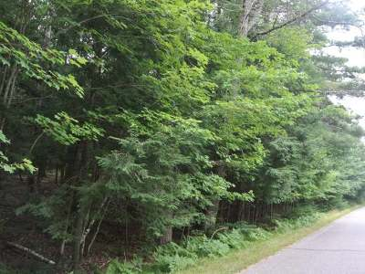 Residential Lots & Land For Sale: On Four Mile Creek Rd