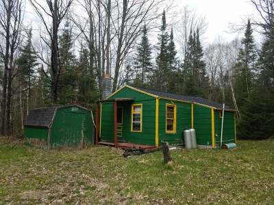 Three Lakes WI Single Family Home For Sale: $49,500