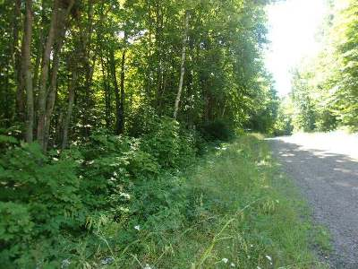Residential Lots & Land For Sale: 33 Acres Desperation Rd