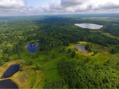 Residential Lots & Land For Sale: 6248 Little Portage Lake Rd