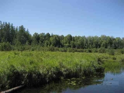 Residential Lots & Land For Sale: #5-5802 Hwy 51