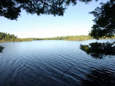 Rhinelander Residential Lots & Land For Sale: Lot2 Pine Point Dr