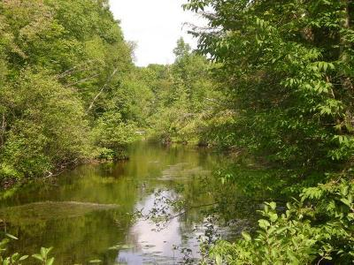 Residential Lots & Land For Sale: On E Burnt Dam Rd
