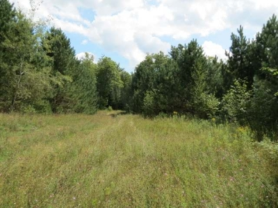 Residential Lots & Land For Sale: On Hiawatha Lake Rd