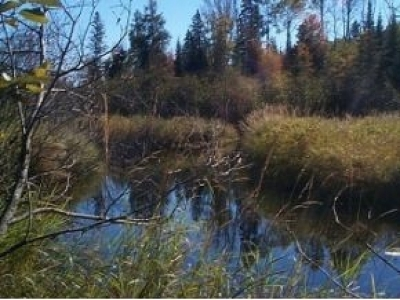 Residential Lots & Land For Sale: #6-5802 Hwy 51