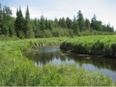 Residential Lots & Land For Sale: #7-5802 Hwy 51