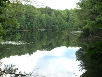 Gleason Residential Lots & Land For Sale: On Pickerel Lake Rd