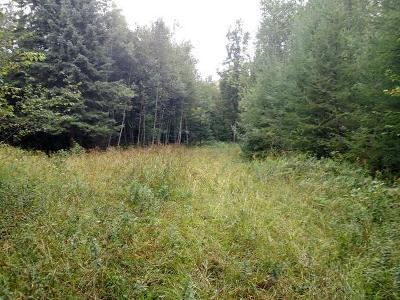 Residential Lots & Land Active O/C: Near Windy Ave