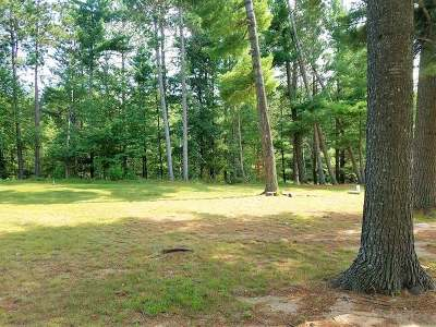 Newbold WI Residential Lots & Land For Sale: $34,900