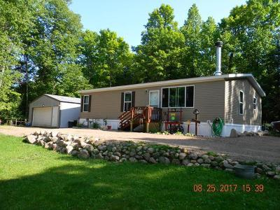 Forest County, Iron Wi County, Langlade County, Lincoln County, Oneida County, Vilas County Single Family Home For Sale: 14019 Adelaide Dr