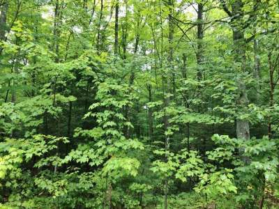 Residential Lots & Land For Sale: On Squaw Lake Rd W