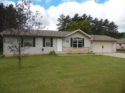 Tomahawk Single Family Home For Sale: 226 South View Dr