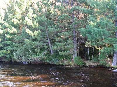 Three Lakes Residential Lots & Land For Sale: On Hwy 32