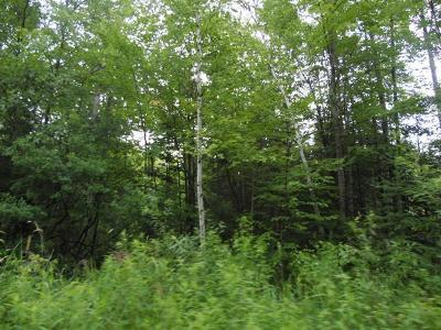 Oneida County, Lincoln County, Price County Residential Lots & Land For Sale: 40 Acres Carls Rd