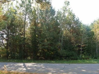 Three Lakes WI Residential Lots & Land For Sale: $19,500