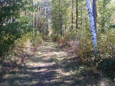 Eagle River Residential Lots & Land For Sale: 2088 Adams Rd