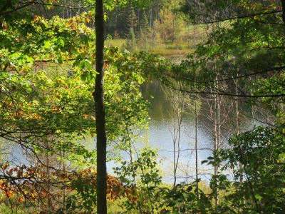 Lac Du Flambeau WI Residential Lots & Land For Sale: $56,900